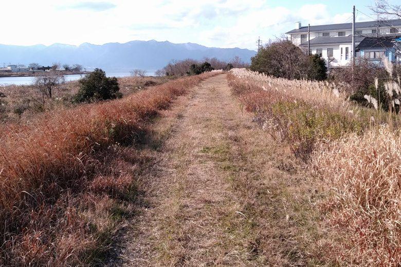 愛知川の北岸の土手の歩道