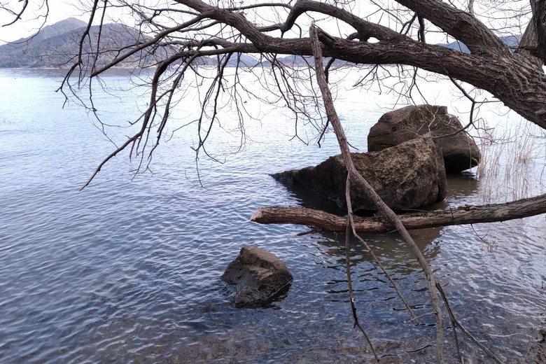 藤ヶ崎龍神社の周囲の岩