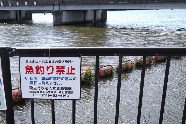 流木止めの網から排水機場の間は釣り禁止