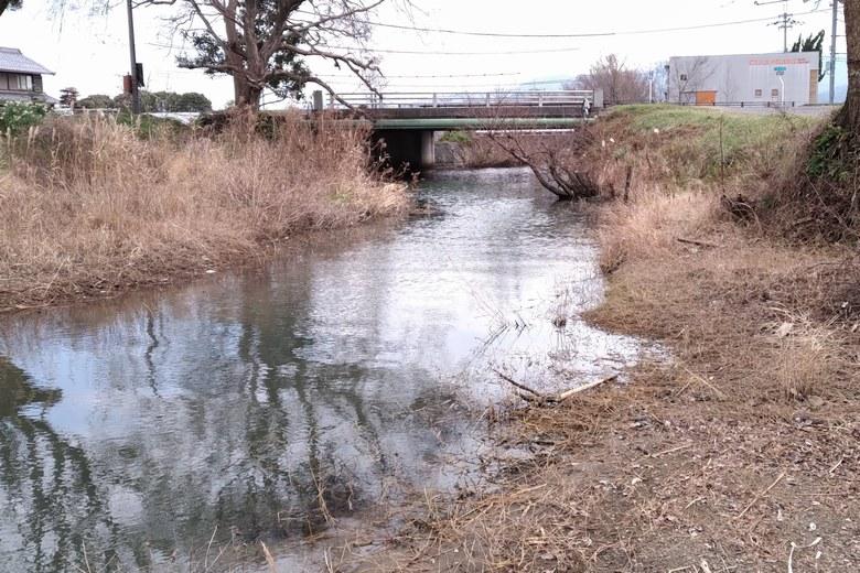 蓮原農村公園の水路が琵琶湖に流れ込む