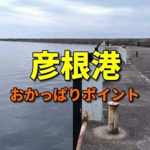 彦根港のおかっぱりバス釣りポイント