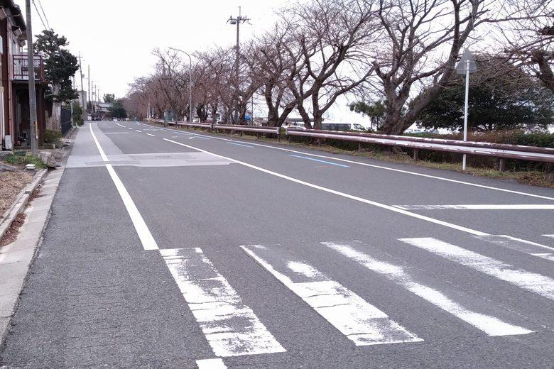 彦根港の前を通る道路