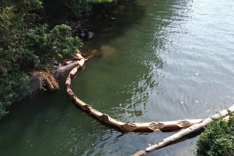 堀切湾に流れ込む諸子川