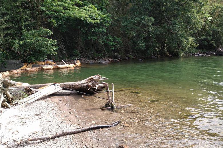 諸子川の流れ込み
