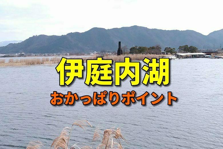伊庭内湖のおかっぱりバス釣りポイント
