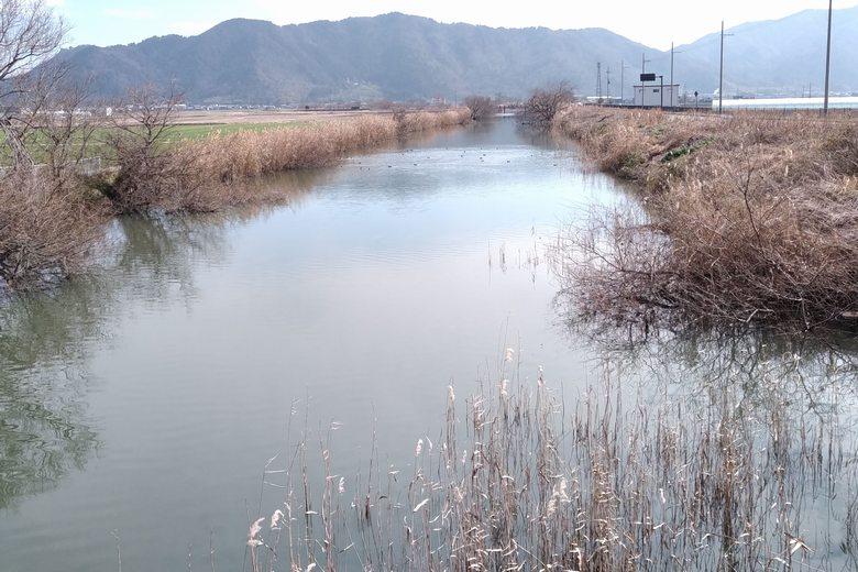 浦葭橋より上流の水路