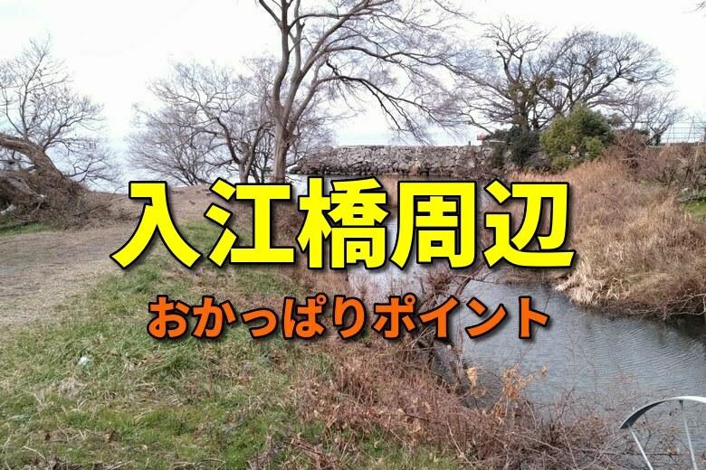 入江橋周辺のおかっぱりバス釣りポイント