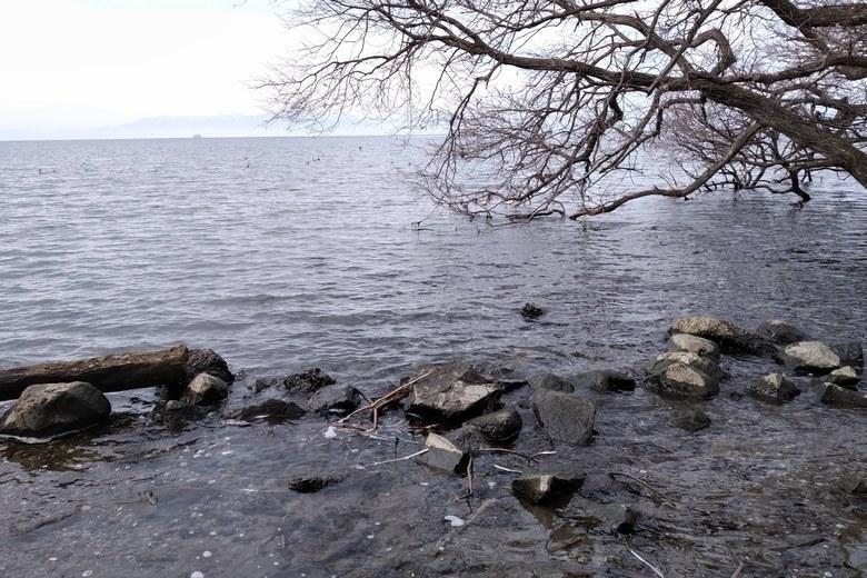 石が多い岸辺と沖