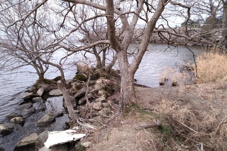 水路の流れ込みと、石積み突提