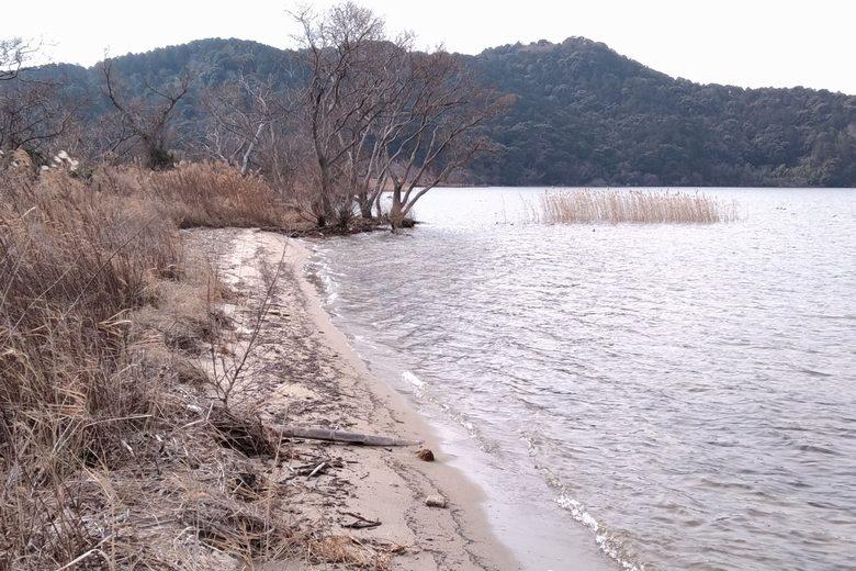 伊崎エリアの砂浜