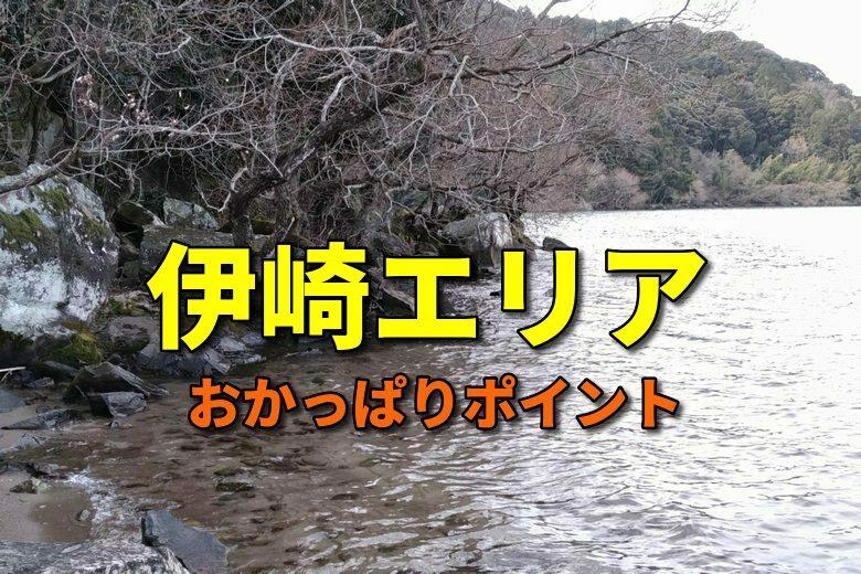 伊崎エリアのおかっぱりバス釣りポイント