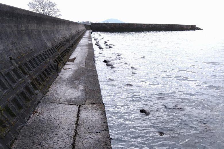 彦根港の裏側のブロック帯