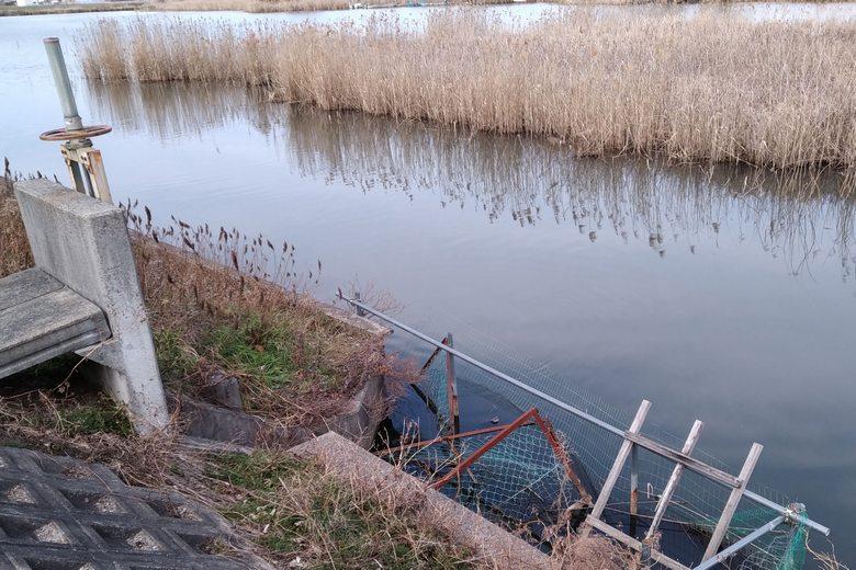 きぬがさ橋の上流の水門