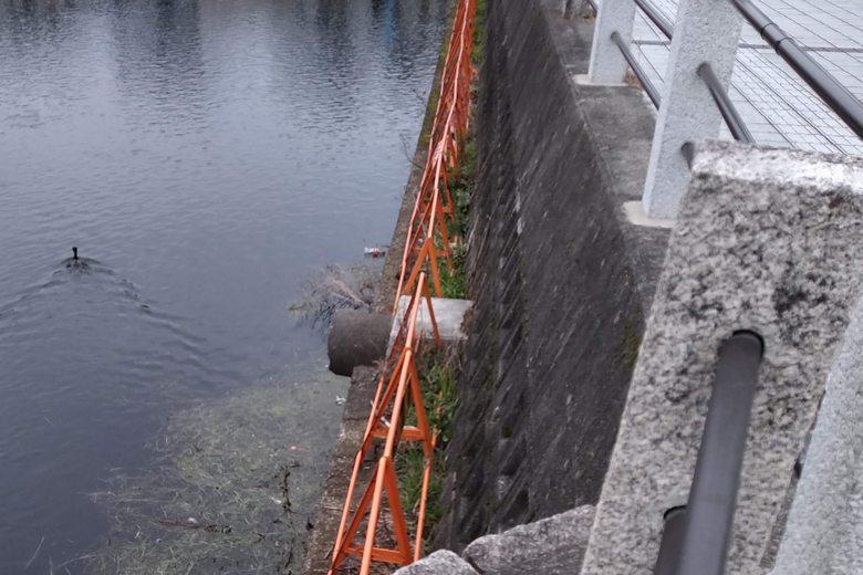 旧彦根港の船溜まりの護岸に置かれたフェンス