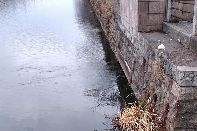 旧彦根港の、北東の排水口