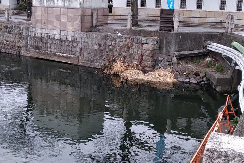 旧彦根港にある、北東の2つの排水口