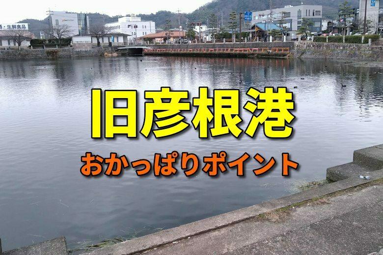 旧彦根港のおかっぱりバス釣りポイント