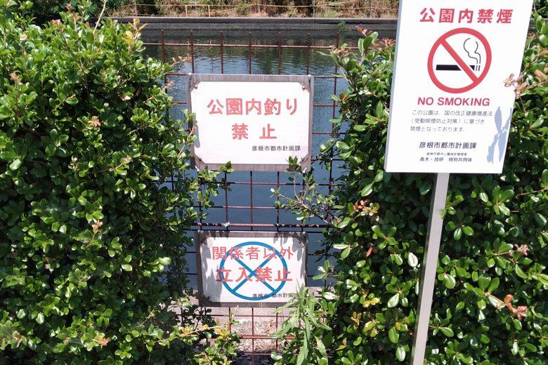 旧彦根港の公園エリア内は釣り禁止