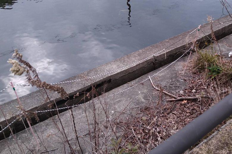 旧彦根港の、北側の立入禁止エリアにはられたロープ