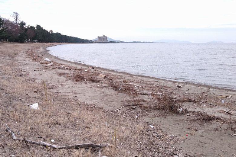 松原水泳場の砂浜