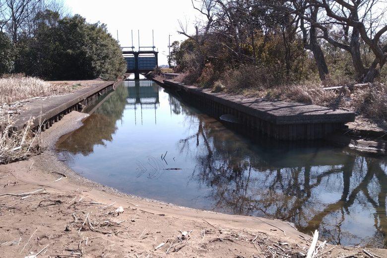 南三ツ谷公園エリアの西にある、水路の流れ込み