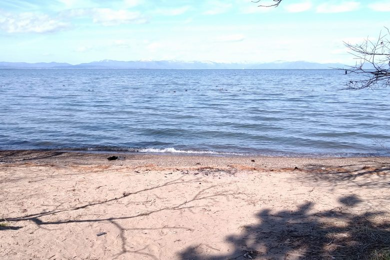 南三ツ谷公園の前の岸辺