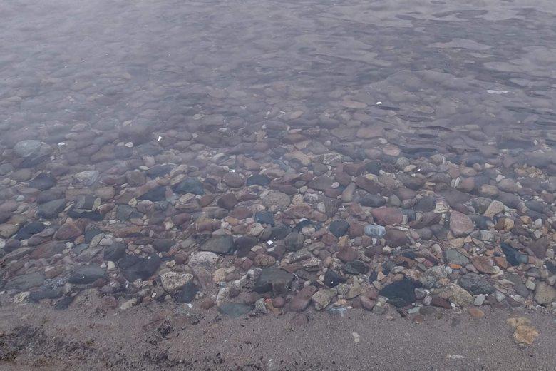 宮ヶ浜の西側の、石が多いボトム
