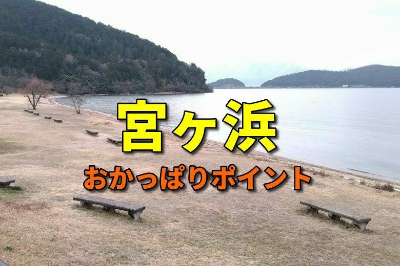 宮ヶ浜のおかっぱりバス釣りポイント