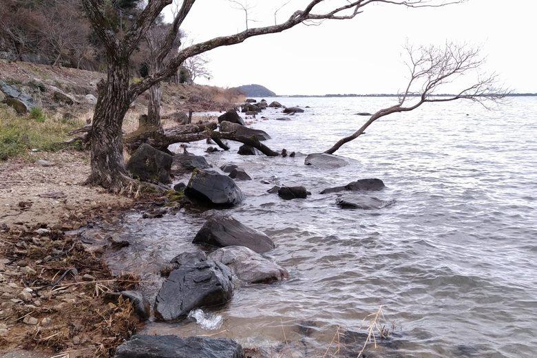 水ヶ浜の南の岸辺