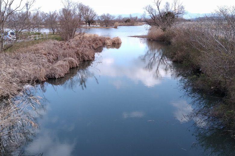 野田沼の南にある、横川からの水路