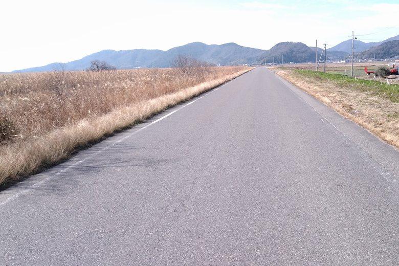 西の湖の北の水路沿いを通る、県道526号線