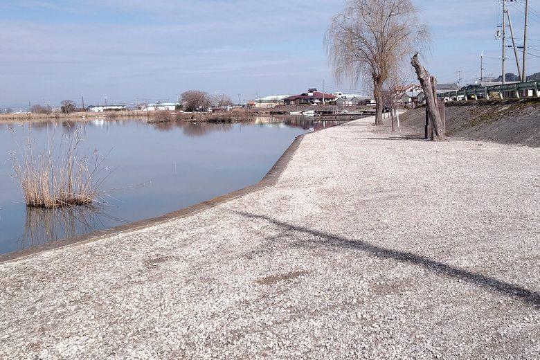 西の湖の東の船溜まりエリア