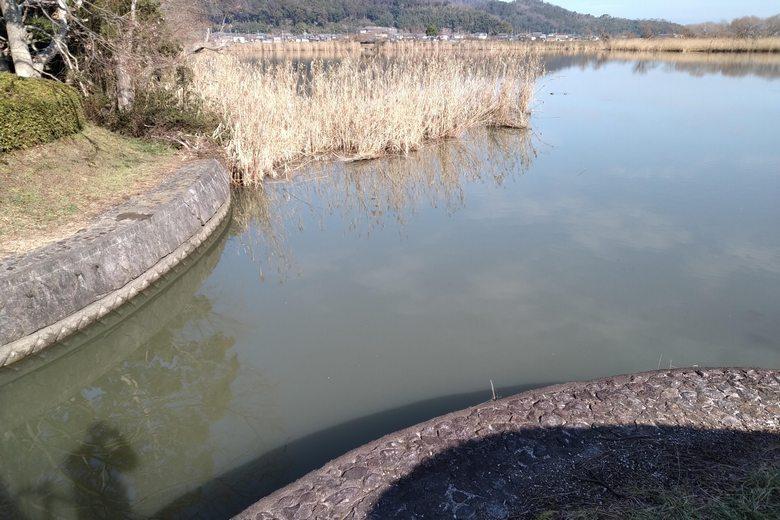 西の湖園地に流れ込む米塚川