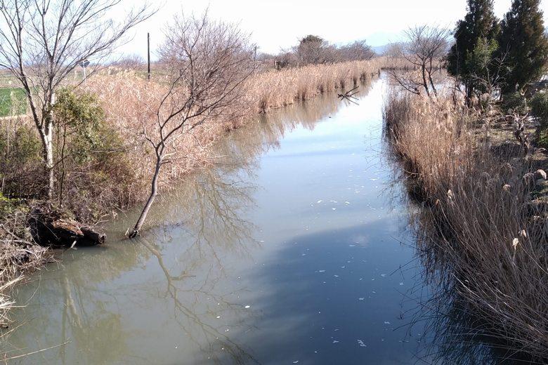 西の湖園地に流れ込む水路