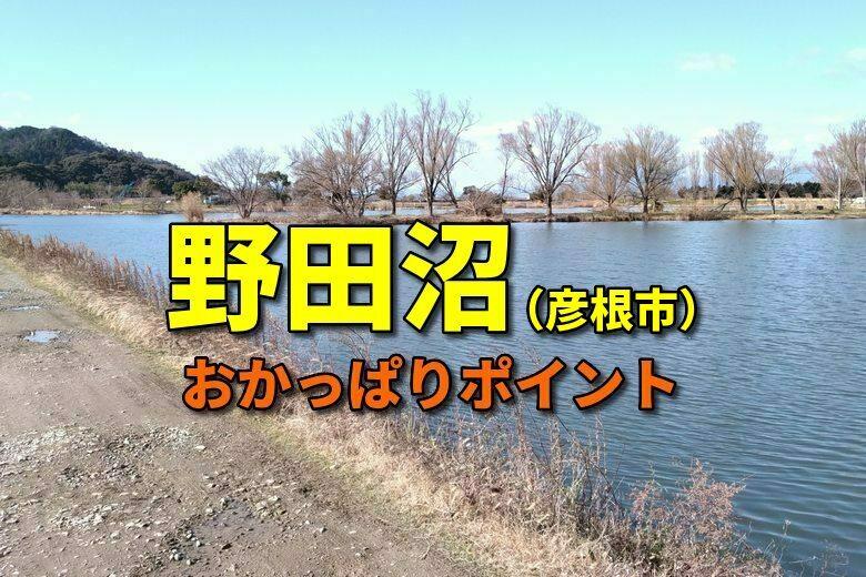 彦根市の野田沼の、おかっぱりバス釣りポイント