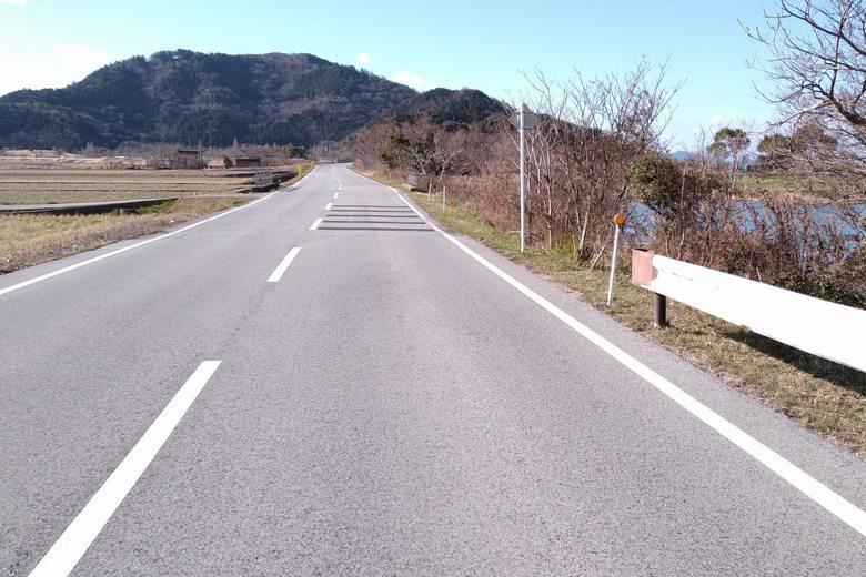 彦根の野田沼の前を通る道路