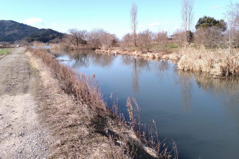 野田沼から流れ出る江面川と、あぜ道の岸辺