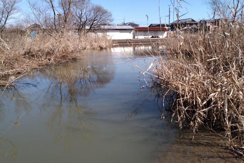 不飲川の流れ込み