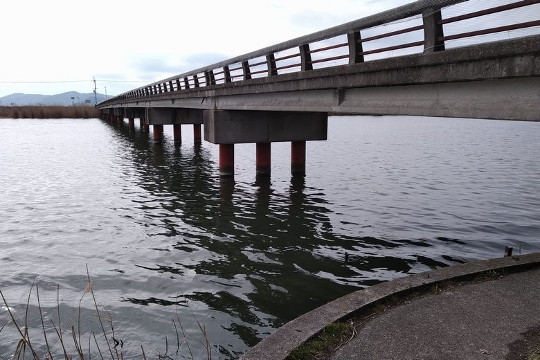 北から見た乙女橋