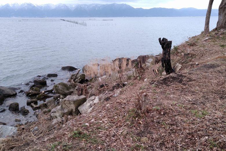 猿ヶ崎の岬と、沖のエリ