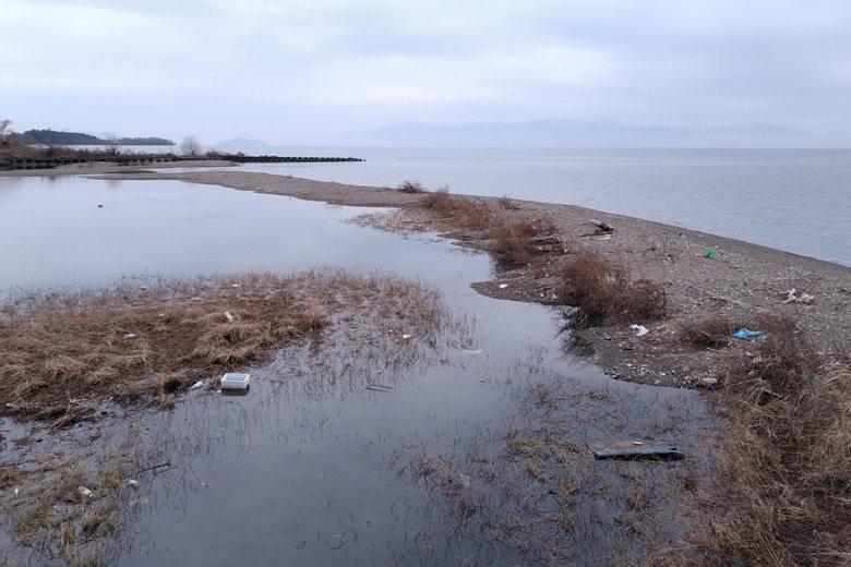 芹川の河口をフタするように溜まった砂