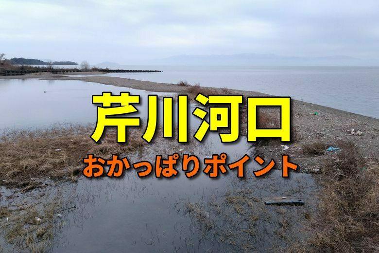 芹川河口のおかっぱりバス釣りポイント