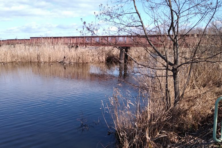 曽根沼の東側に架かっている橋