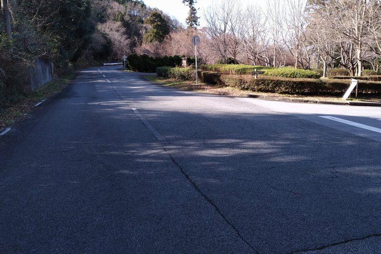 曽根沼の南を通る、荒神山通りの道路