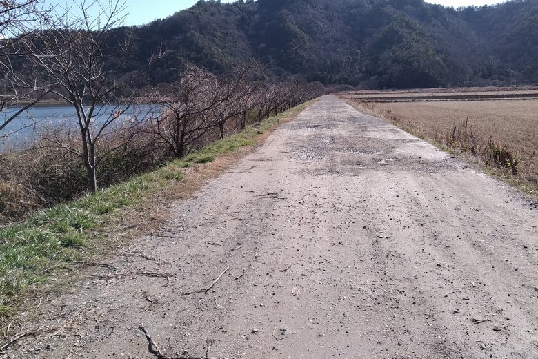 曽根沼の西のあぜ道