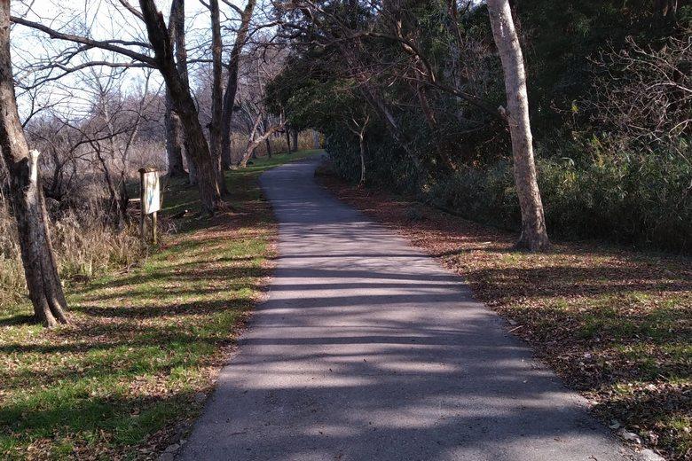 曽根沼の外周にある歩道