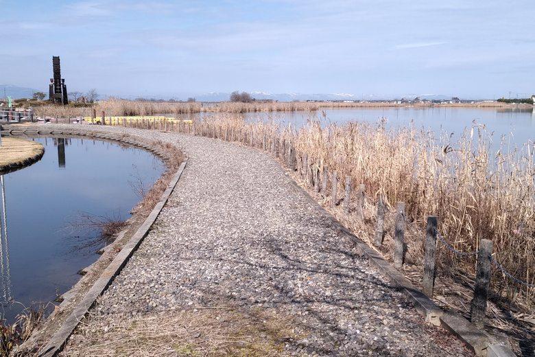 能登川水車エリアの公園の岸辺