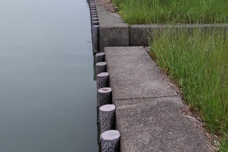 宇曽川のデコボコした護岸