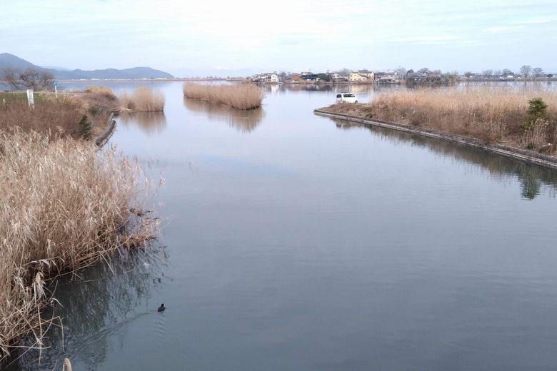 西の湖に流れ込む山本川