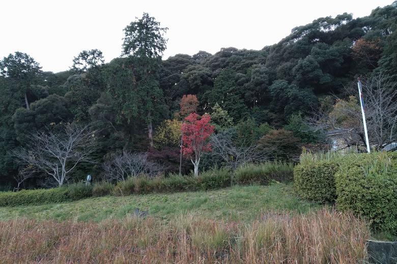 瀬田川のすぐ近くにある伽藍山
